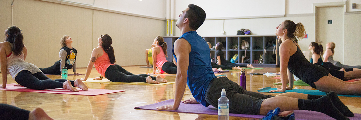 Students performing upward dog in a yoga class.